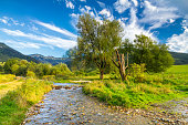 Sunny landscape with a creek flowing from mountains and blue sky with clouds in the background, national park Mala Fatra, Slovakia.