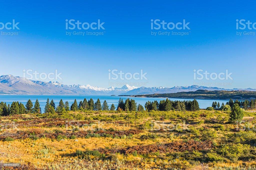 Sunny landscape with Mt Cook over Pukaki lake stock photo