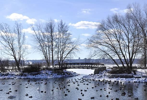 Sonnige Lasalle, Winter – Foto