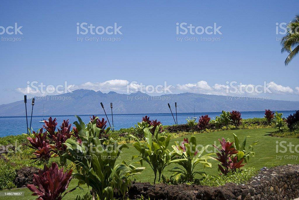 Sunny Maui stock photo