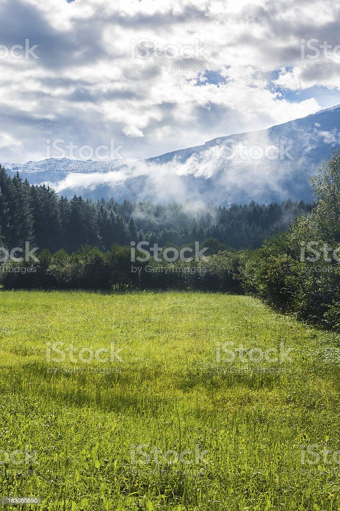 Sunny meadow in the Alps royalty-free stock photo