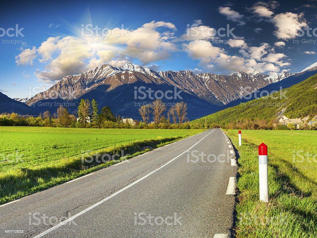 Sunny morning in alpine meadows. Alps, France. stock photo