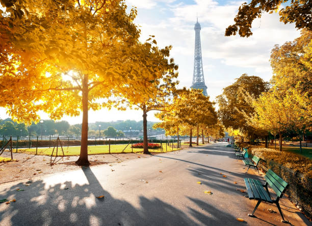 Sunny morning in Paris in autumn Sunny morning and Eiffel Tower in autumn, Paris, France ile de france stock pictures, royalty-free photos & images