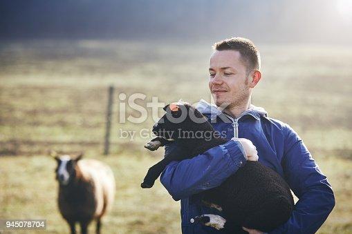 istock Sunny morning on the rural farm 945078704