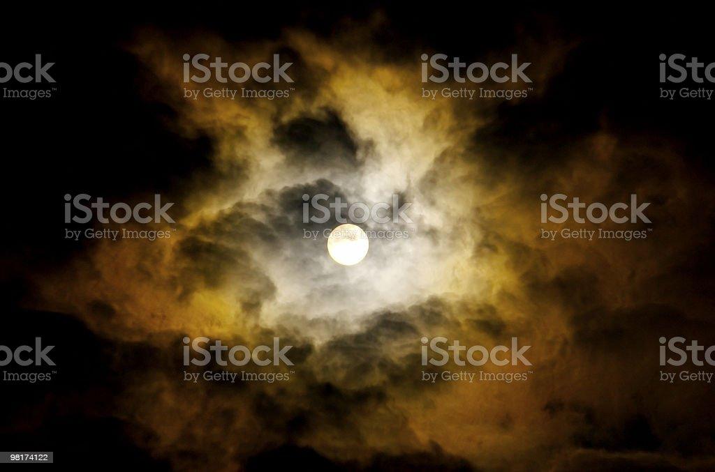 Sunny foto stock royalty-free