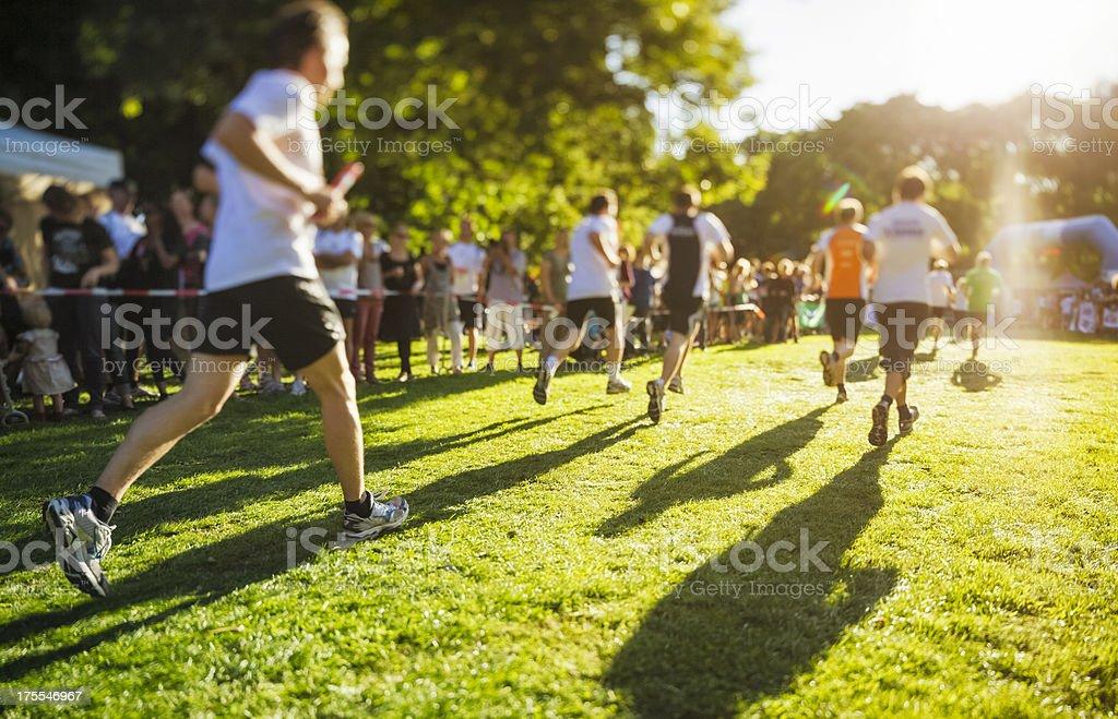 Sunny Race royalty-free stock photo