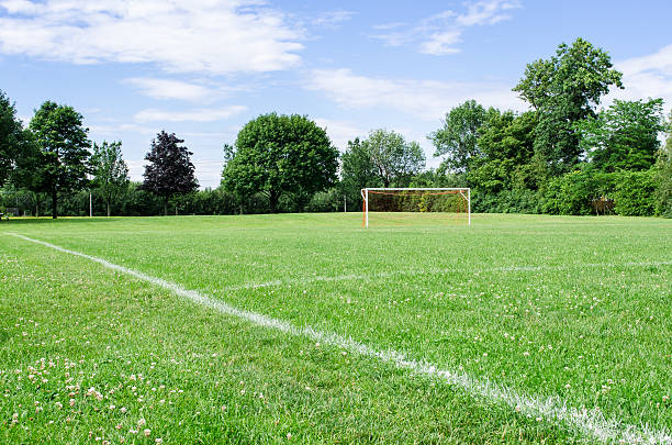 sunny soccer field - soccer field stock photos and pictures
