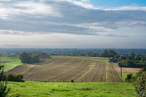 sonnige spels auf abfallenden landschaft northern frankreich - revierverhalten stock-fotos und bilder