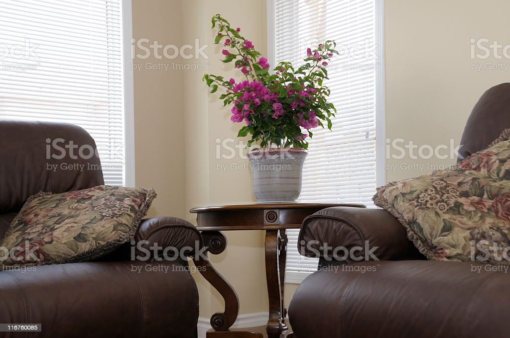 sunny spot, interior, family room, leather furniture, plant on table royalty-free stock photo