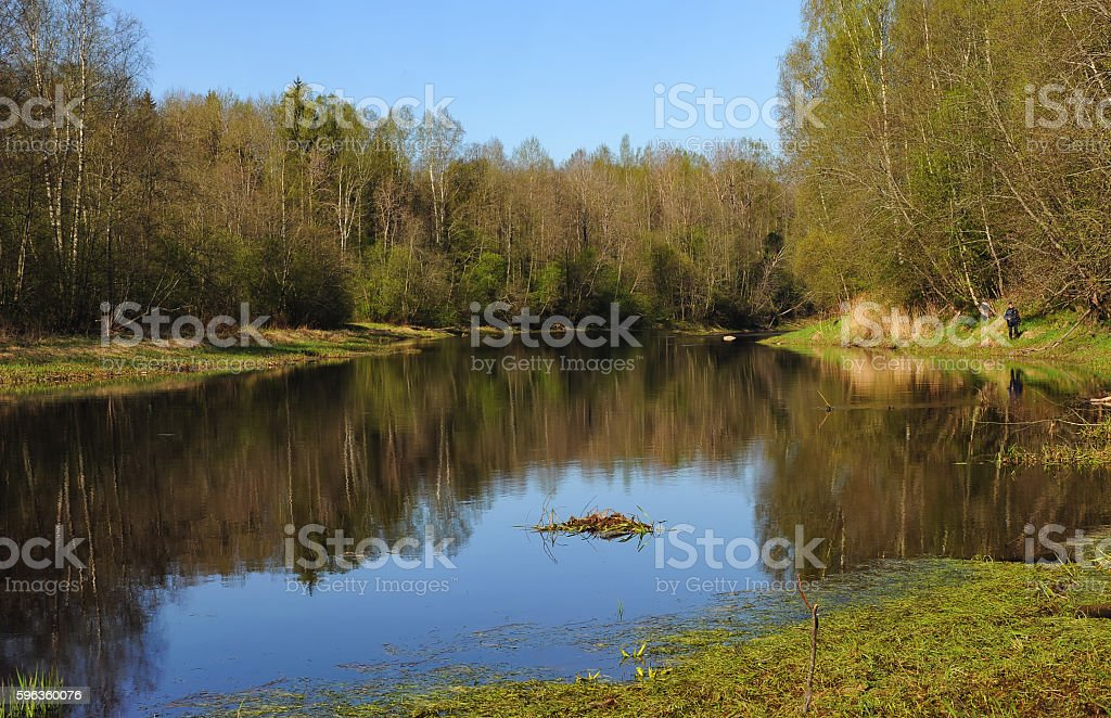 Sunny spring day royalty-free stock photo