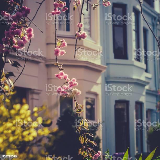 Sunny springtime street in glasgow scotland uk picture id907715590?b=1&k=6&m=907715590&s=612x612&h=yyzi2c8rq vwhzxa3ol3nmrwyqvlm3qdkiw3 bf os8=