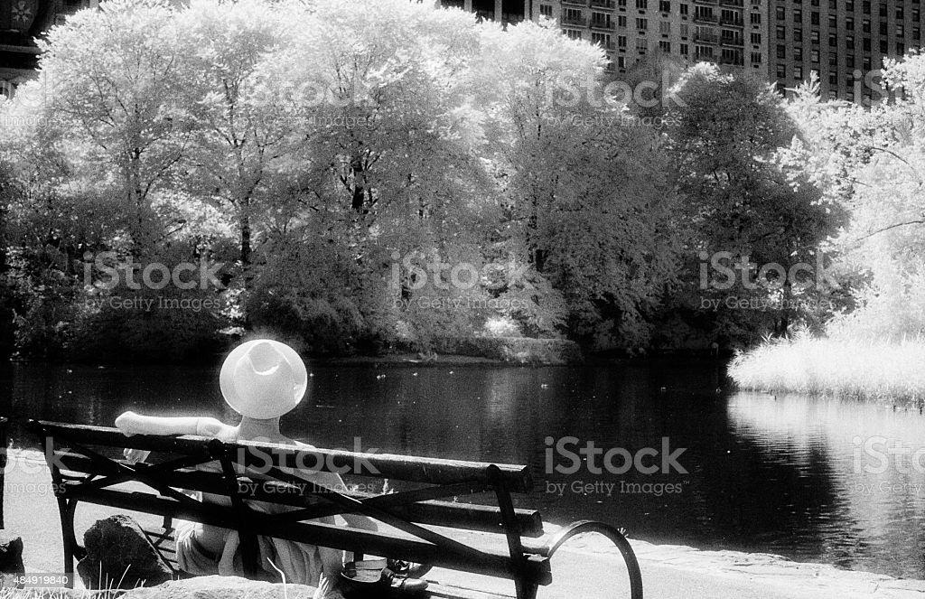 Sunny Sunday in Central Park stock photo