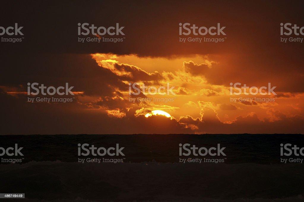 Sunny Sunrise beaming royalty-free stock photo
