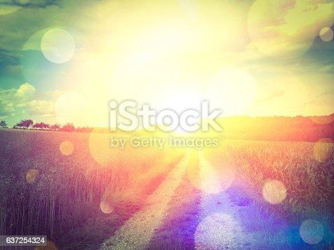 istock Sunny way 637254324