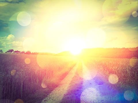 Sunny way