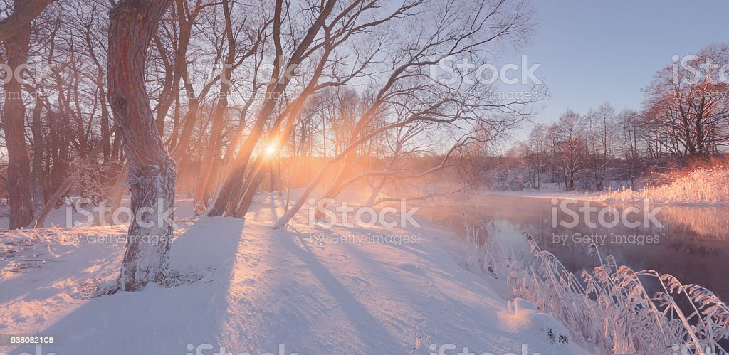 Sunny winter background with sun rays stock photo