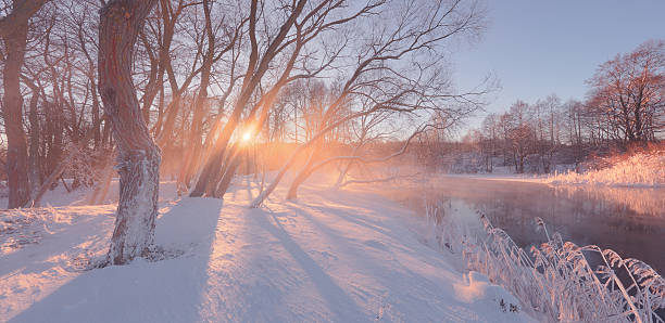 sunny winter background with sun rays - february stock photos and pictures