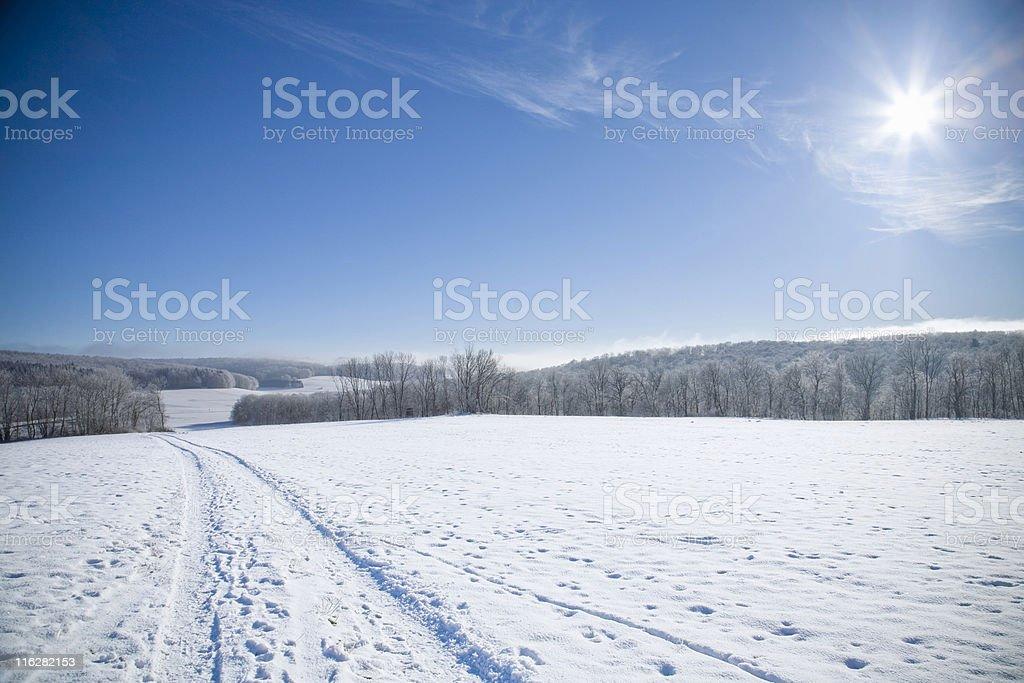 sunny winter day royalty-free stock photo