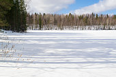 Winter landscape with lake, trees and snow
