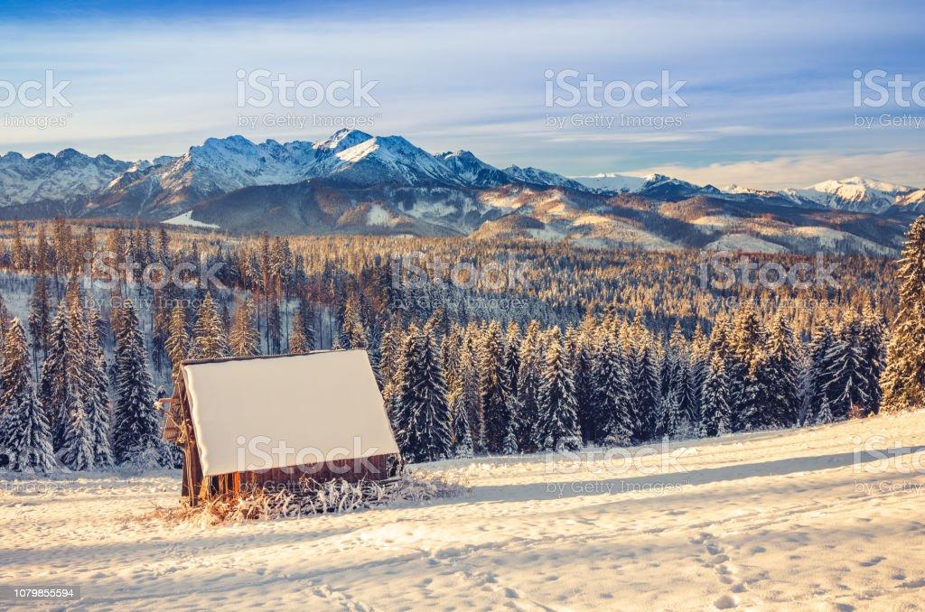 Sonnigen Wintermorgen in schneebedeckten hohen Tatra – Foto