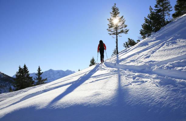 sonnige winterlandscape, allgäu, bayern, deutschland - allgäu stock-fotos und bilder