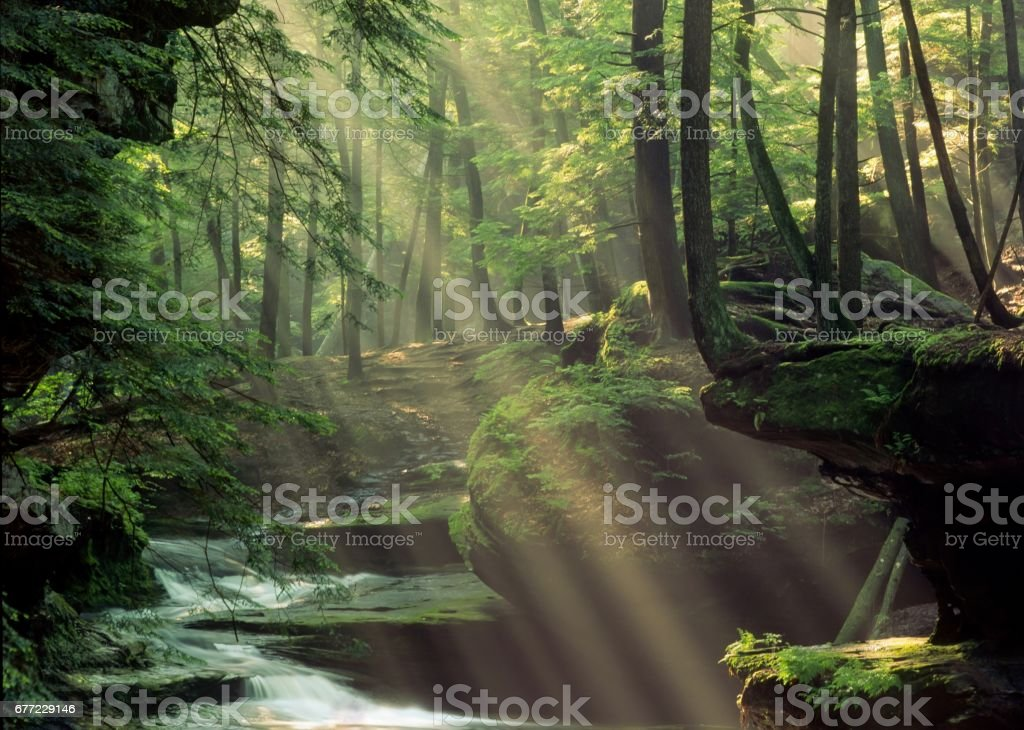 Sunrays in Mist at Hocking Hills State Park stock photo