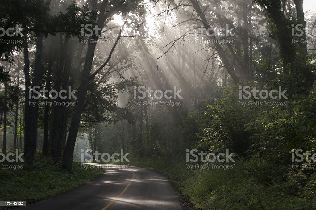 Sunrays stock photo
