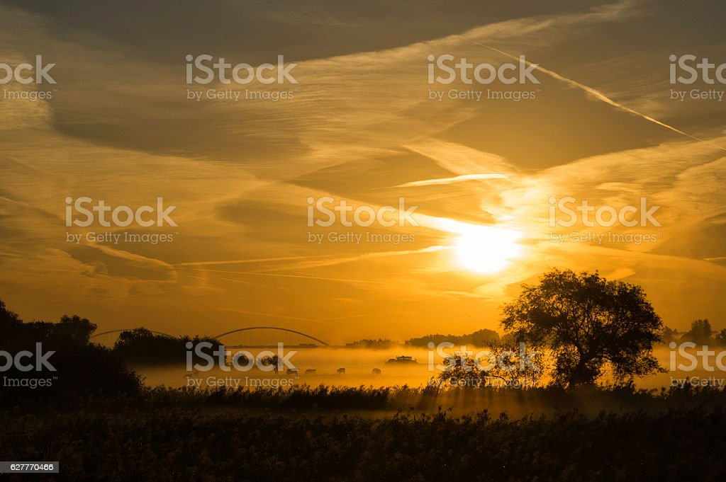 Sunrise above the river Merwede stock photo