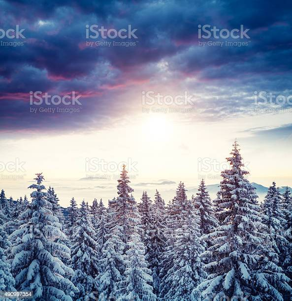 Photo of Sunrise Above The Winter Forest