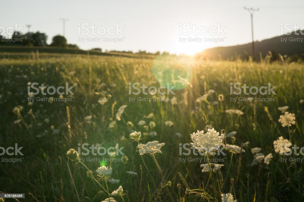 Sunrise and sunset over the hills and town. stock photo