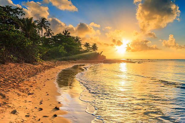 Sunrise at a brazilian beach stock photo