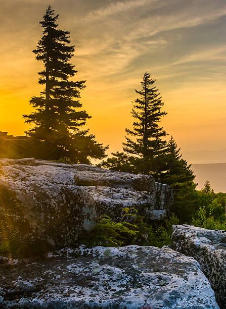 Sunrise at Bear Rocks Preserve, in Dolly  Sods Wilderness, Monon stock photo