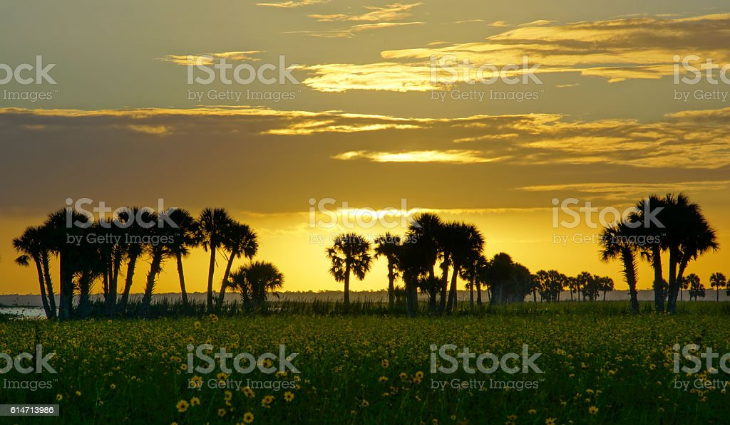 Sunrise at Lake Jessup Near Orlando in Central Florida stock photo