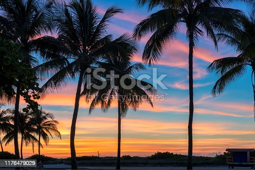Silhouette coconut palm trees on tropical beach at sunrise. Miami Beach, Florida. Vintage tone.
