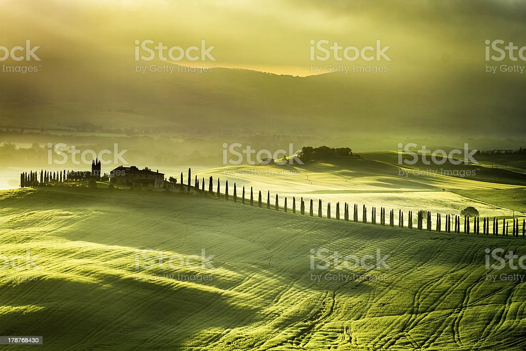 Sunrise at San Quirico d'Orcia royalty-free stock photo
