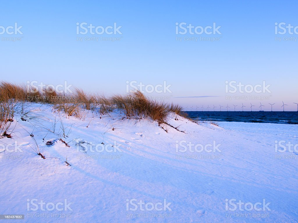 Amager Beach captured a winter morning with off shore wind turbines...
