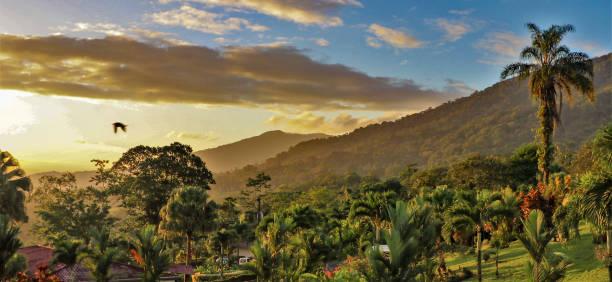 zonsopgang aan de voet van de arenal vulkaan, costa rica - costa rica stockfoto's en -beelden
