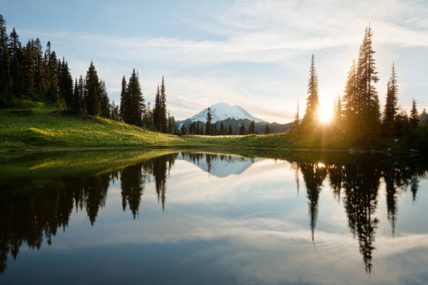 sunrise at tipsoo lake with mt. rainier - wybrzeże północno zachodnie pacyfiku zdjęcia i obrazy z banku zdjęć