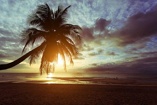 Sonnenaufgang am Strand  – Foto