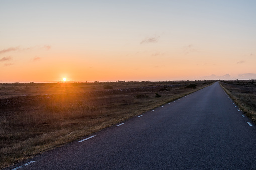 istock Sunrise by a straight country road in a great plain grassland 1173404661