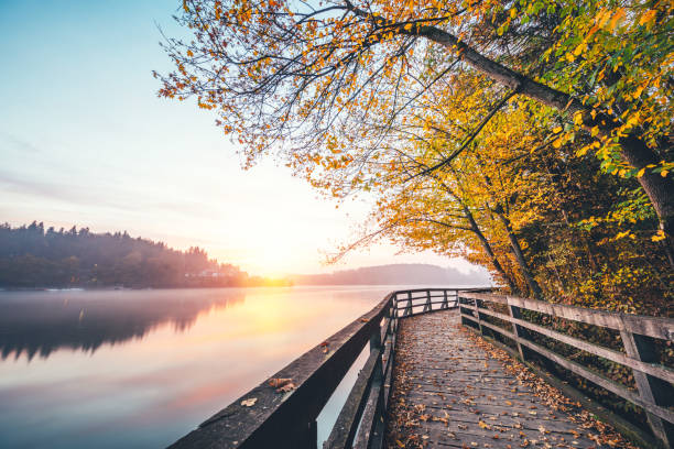 sunrise by the lake - walkway and bridge stock photos and pictures