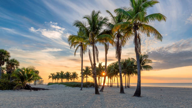 Sunrise by the ocean beach in Florida Keys stock photo