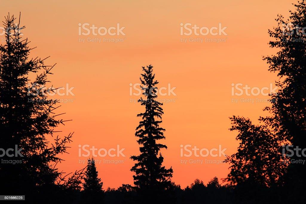 Sunrise colors stock photo