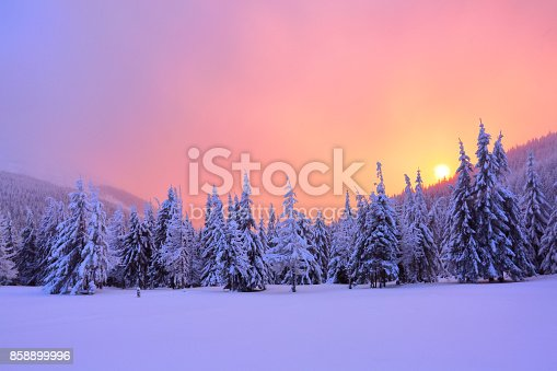istock Sunrise enlightens sky, mountain and trees standing in snowdrifts covered by frozen snow with yellow shine. Winter landscape for leaflets. 858899996