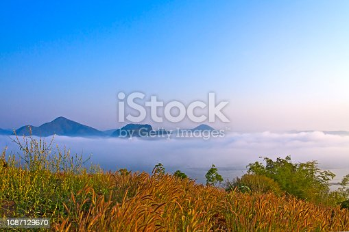 1034754000istockphoto sunrise fresh mist morning and idyllic with dry flower at viewpoint 1087129670