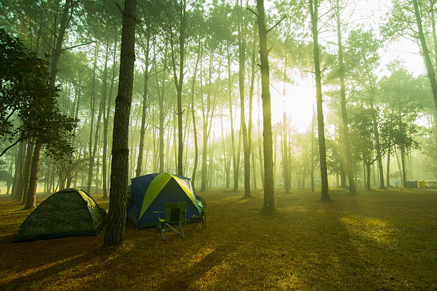 Sunrise in a camping. Sunrise in a camping. republic of karelia russia stock pictures, royalty-free photos & images