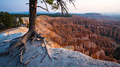 Bryce Canyon National Park at dawn in the summer without people