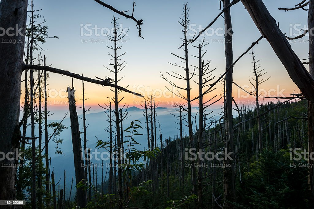 Sunrise in Great Smoky Mountains National Park stock photo