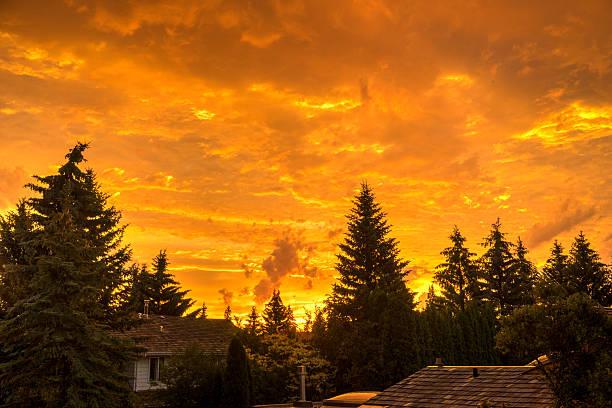Sunrise in June stock photo