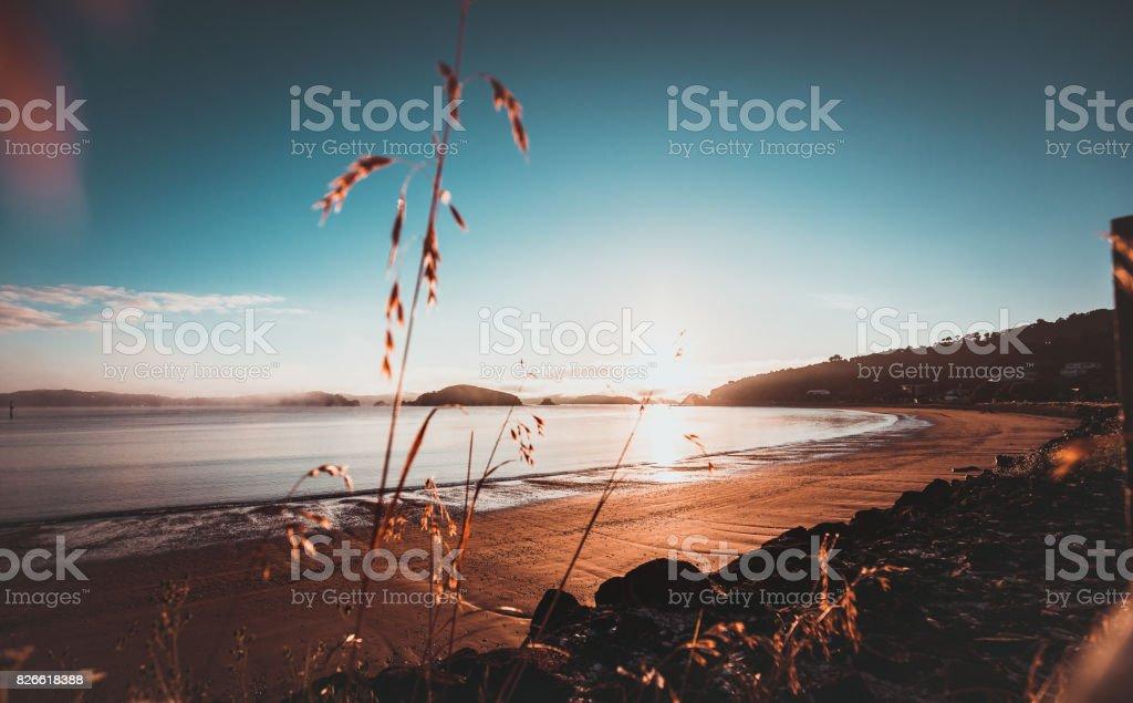 Sonnenaufgang in New Zealand Paihia Beach – Foto